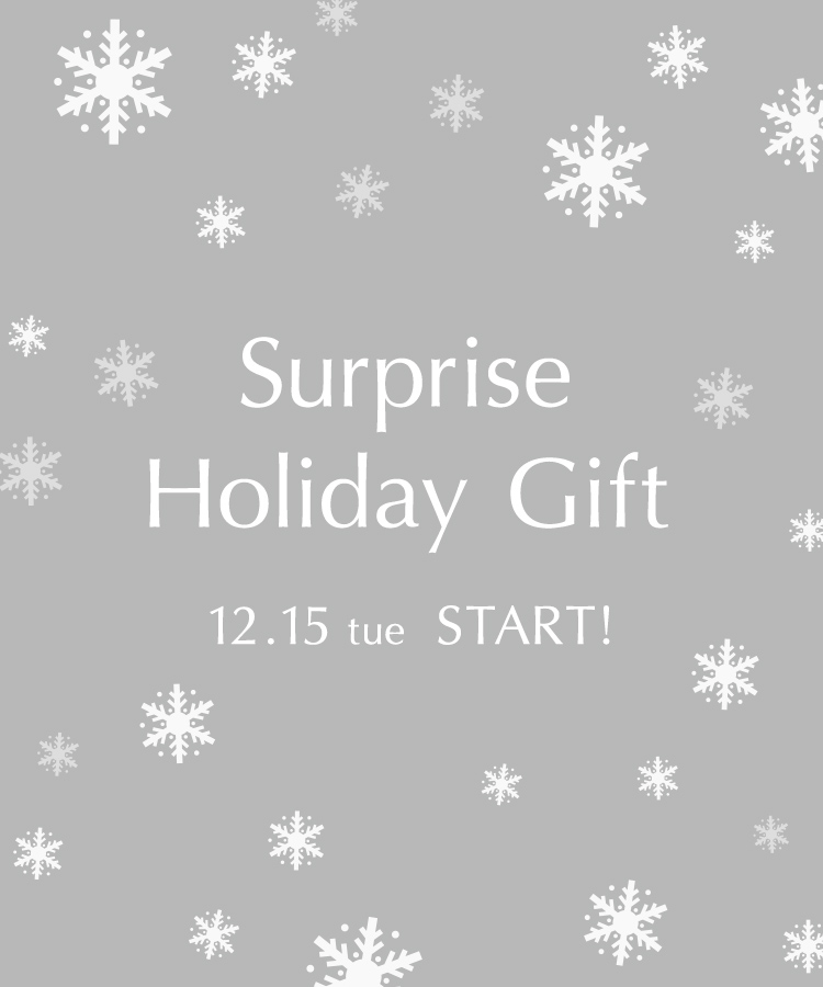ONLINE BOUTIQUE Holiday Gift